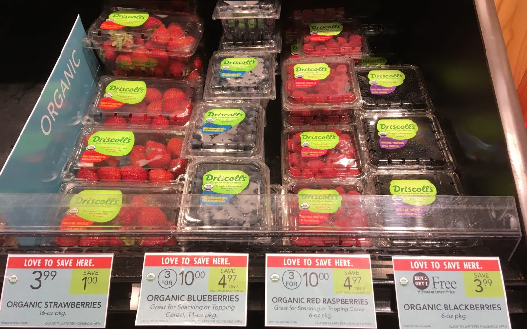 Summertime Organic Berries: Low Prices, Delicious, and Great for Your Health!